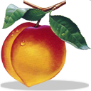Peachtree Complete Accounting icon png 128px