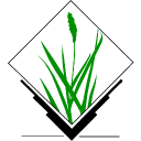 GRASS icon png 128px