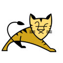Apache Tomcat icon png 128px