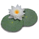 LilyPond icon png 128px