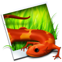 Rawzor Photo icon png 128px