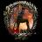 Tomb Raider 2013 icon
