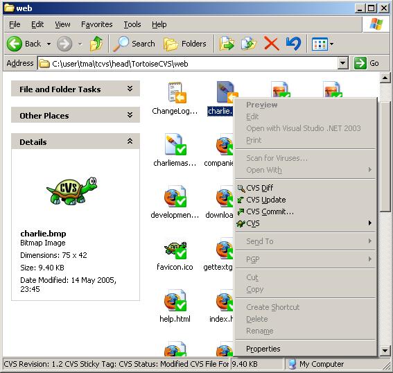 TortoiseCVS picture or screenshot