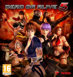 Dead or Alive 5 picture or screenshot