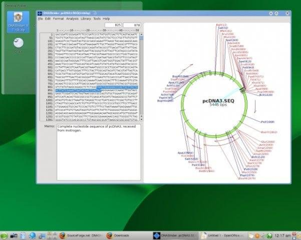 DNAStrider picture or screenshot