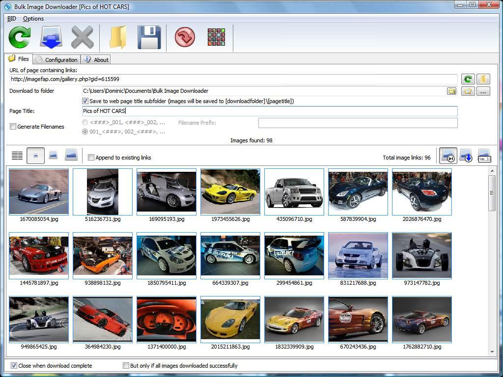 Bulk Image Downloader picture or screenshot