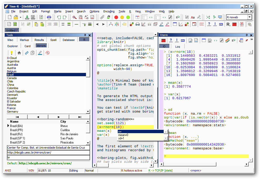 Tinn-R Editor picture or screenshot