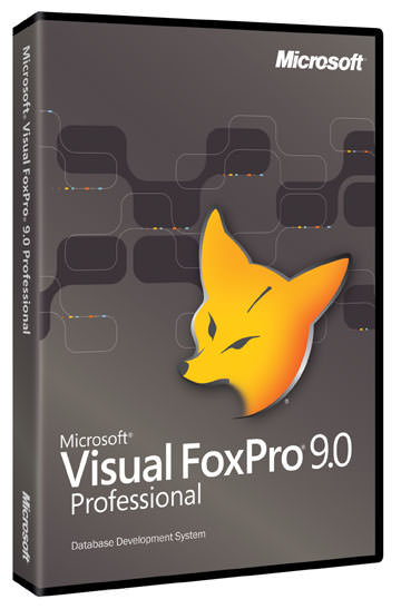 Visual FoxPro picture