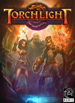 Torchlight picture