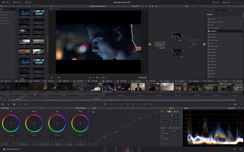 DaVinci Resolve picture