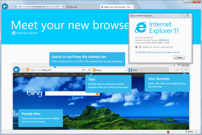 Microsoft Internet Explorer picture