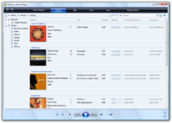 Microsoft Windows Media Player picture