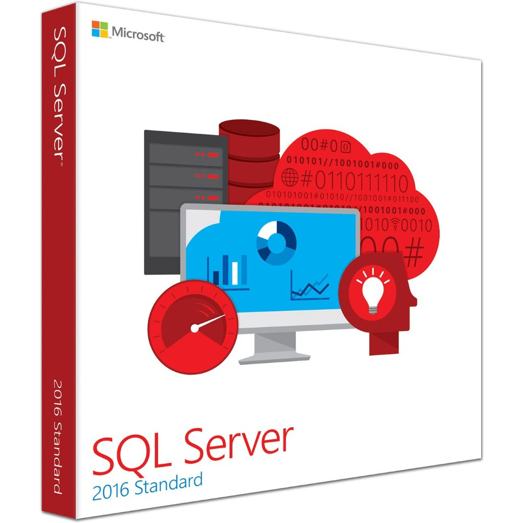Microsoft SQL Server picture