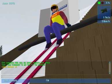 Deluxe Ski Jump 3 picture or screenshot