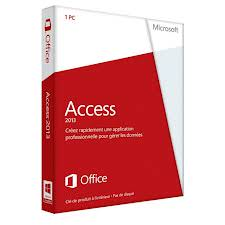 Microsoft Access picture