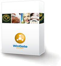 WinGate VPN picture or screenshot