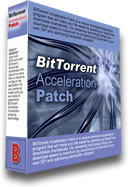 BitTorrent Acceleration Tool picture