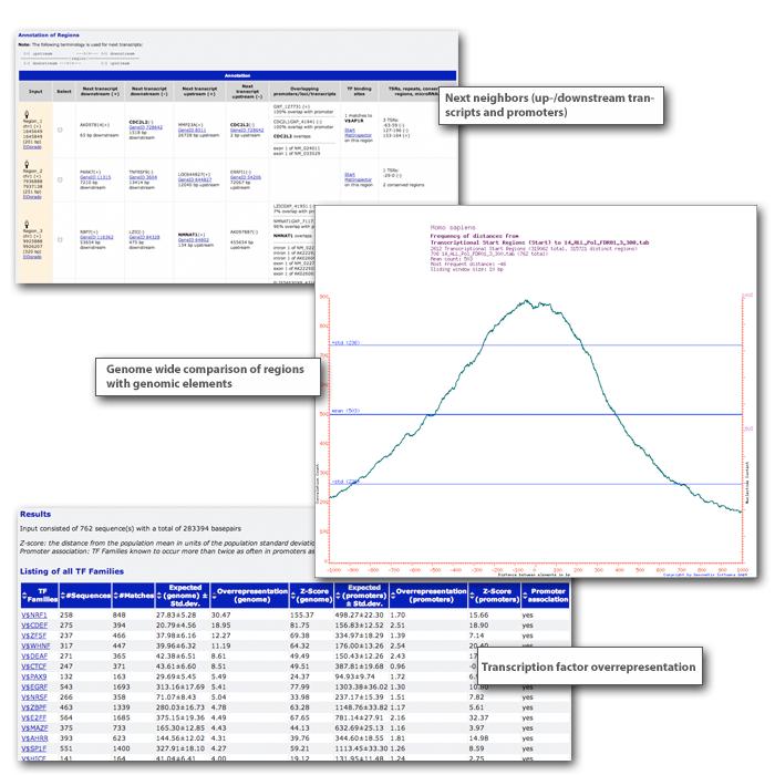 RegionMiner picture or screenshot