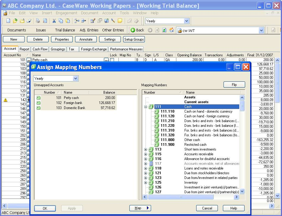 CaseWare Working Papers picture or screenshot