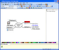 VisiMap Professional picture or screenshot