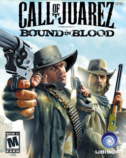 Call of Juarez: Bound in Blood picture