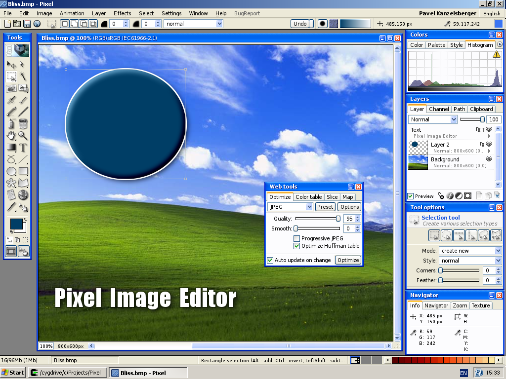 Pixel image editor picture or screenshot