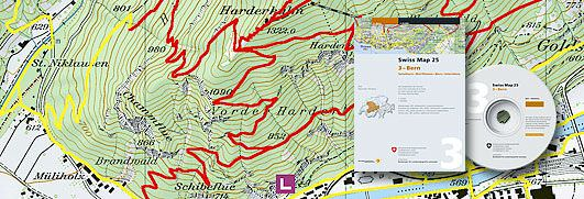 Swiss Map picture