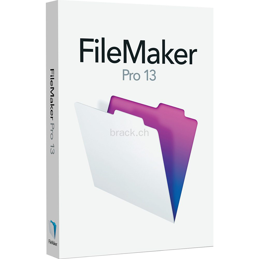 FileMaker Pro for Windows picture
