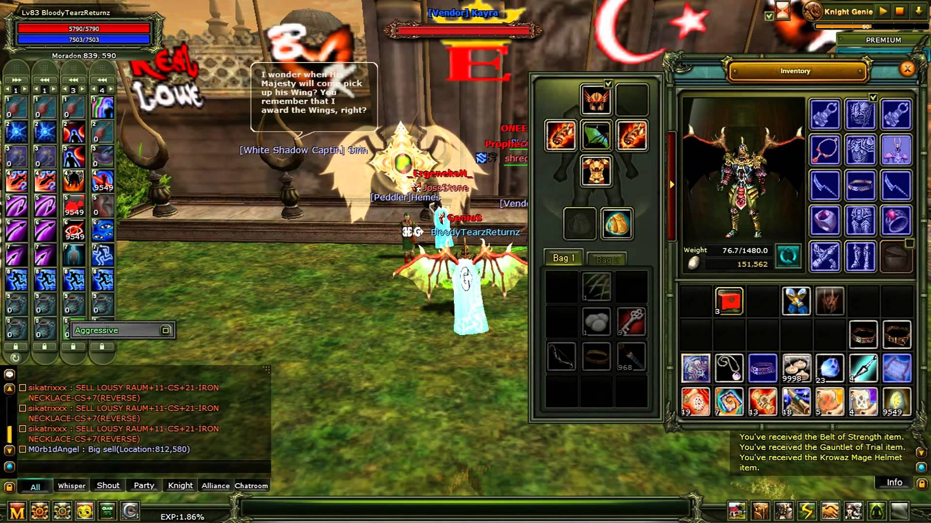 Knight Online picture