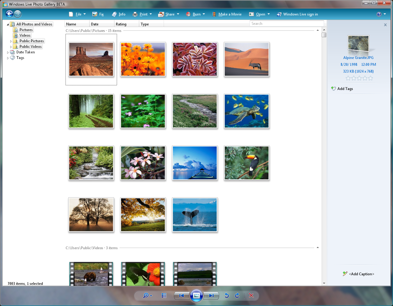Windows Live Photo Gallery picture