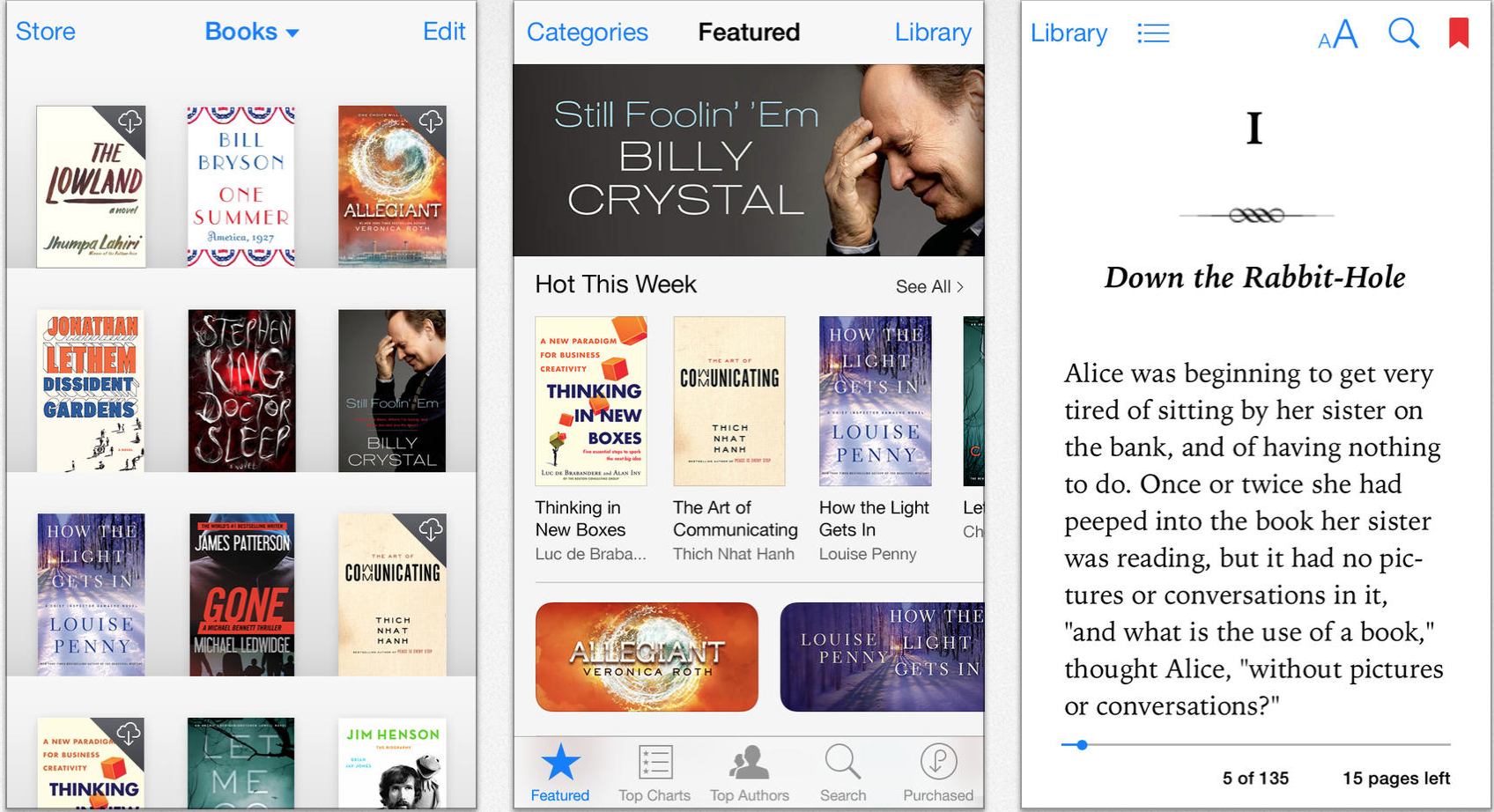 iBooks for iOS picture