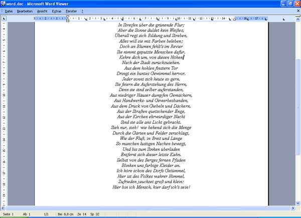 Microsoft Word Viewer picture
