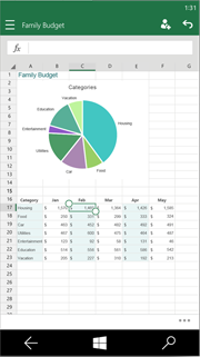 Excel Mobile picture