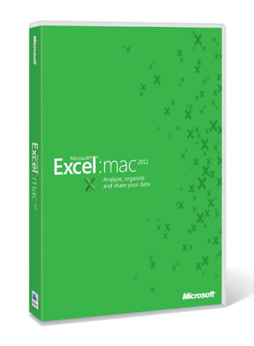 Microsoft Excel for Mac picture