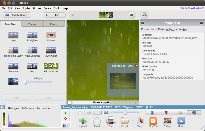 Google Picasa for Linux picture
