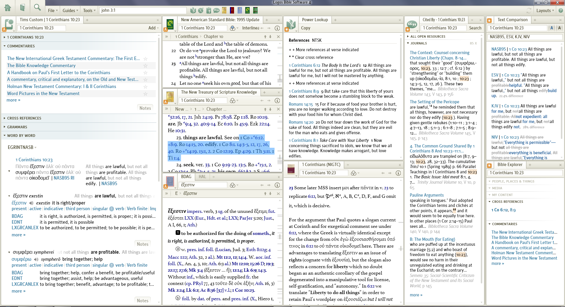 Logos Bible Sofware picture or screenshot