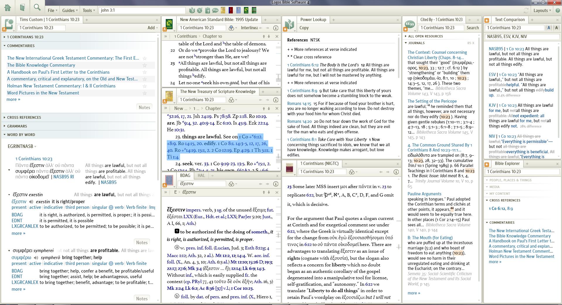 Logos Bible Sofware picture or screenshot