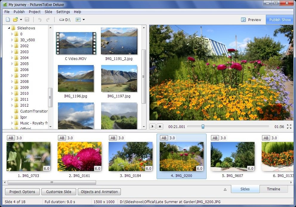 PicturesToExe File Extensions