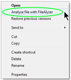 FileAlyzer option in content menu screenshot.
