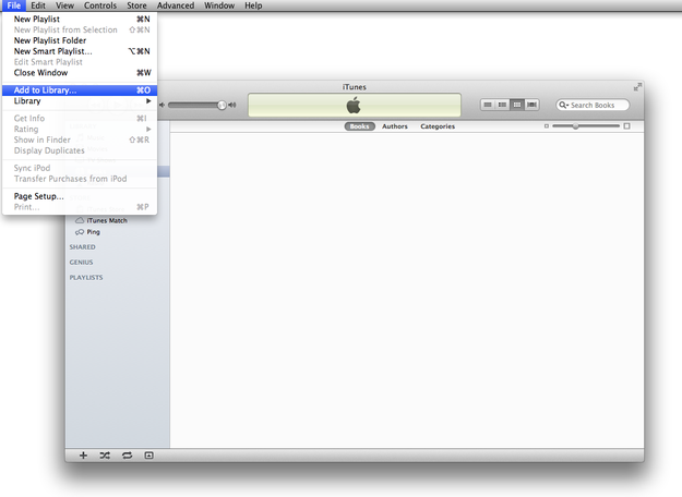 Importing books to iTunes