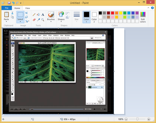 Picture image from pdf exported to Microsoft Paint