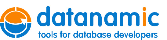 Datanamic Solutions BV logo